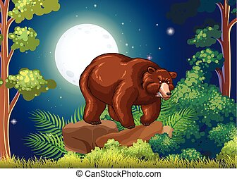 ブラウン, フルである, 大きい弱気, 月, 夜
