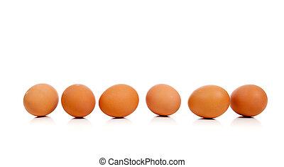 ブラウン, 卵, そっくりそのまま, 白, 横列
