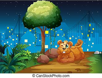 ブラウン, 小道, 熊, 幸せ