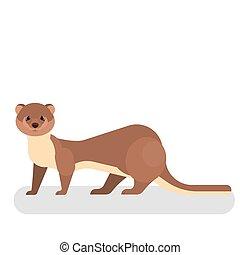 ブラウン, 面白い, かわいい, イタチ, 動物, 小さい, fur.