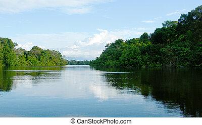 ブラジル, 川, アマゾン, 洗面器