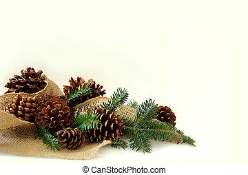 ブランチ, バーラップ, コーン, 木, 松, bac, 白, ボーダー, クリスマス