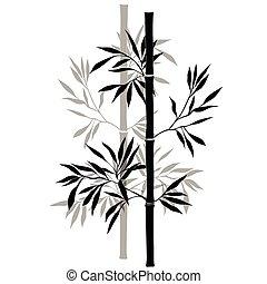 ブランチ, 隔離された, 竹, バックグラウンド。, 白