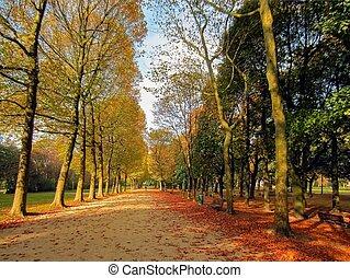 ブリュッセル, ベルギー