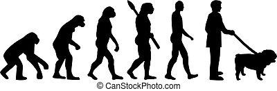 ブルドッグ, 進化, 英語