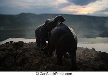 プレーしなさい, 相互, コミュニケートしなさい, 2, 雄牛, 間, fighting., 象