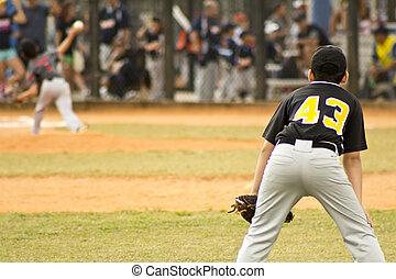 プレーヤー, 野球