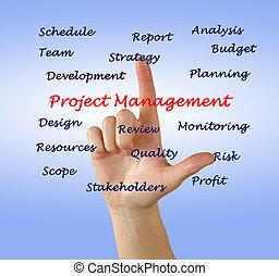 プロジェクトのリーダー