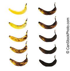 プロセス, 汚れがない, バナナ, 分解しなさい