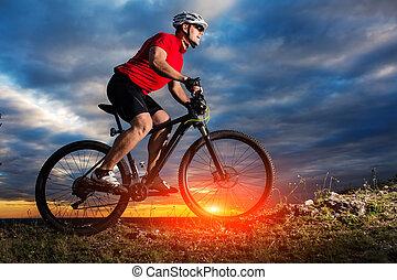 ヘルメット, 人, 自転車, ガラス, 滞在