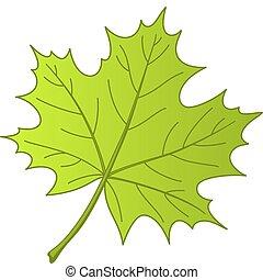 ベクトル, かえで, 葉