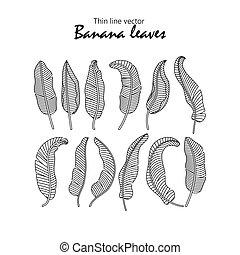 ベクトル, アイコン, トロピカル, バナナ, leaves.