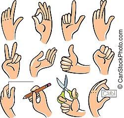 ベクトル, イラスト, の, hands.