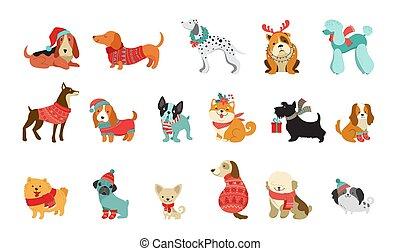 ベクトル, グラフィック, ペット, セーター, かわいい, スカーフ, のように, クリスマス, 犬, イラスト, 付属品, 要素, 陽気, コレクション, 帽子, 編まれる