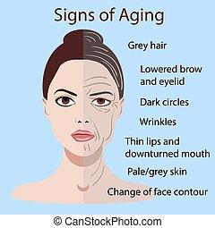 ベクトル, サイン, の, 老化, 顔, ∥で∥, 2, タイプ, の, 皮膚, 若く と 古いです, 隔離された