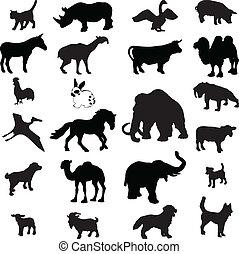 ベクトル, シルエット, 動物