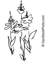 ベクトル, スケッチ, 花の 芽, 茎