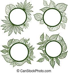 ベクトル, セット, の, 秋, leafs, フレーム