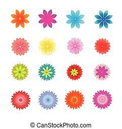ベクトル, セット, 花