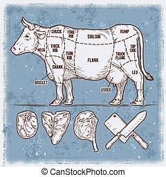 ベクトル, セット, beef., イラスト, cuttings