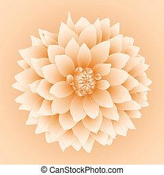 ベクトル, ダリア, flower.