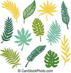 ベクトル, トロピカル, 葉, セット