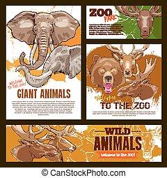 ベクトル, 動物園, スケッチ, ポスター, 野生, 巨人, 動物