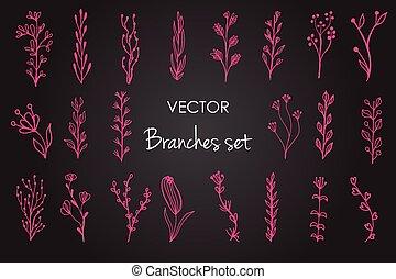 ベクトル, 型, セット, 花の要素