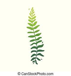 ベクトル, 平ら, 抽象的, 緑, シダ, 植物, アイコン