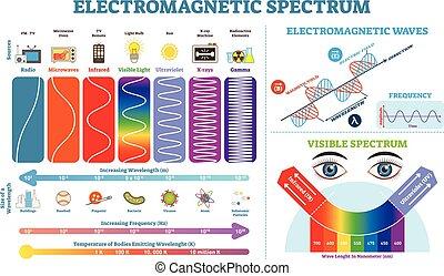 ベクトル, 情報, フルである, elements., temperature., 電磁気である, コレクション, スペクトル, イラスト, 波, 図, infographic, 頻度, 構造, lengths, 物理学, scheme.