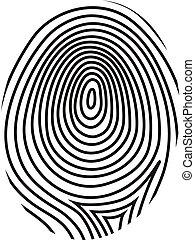 ベクトル, 指紋