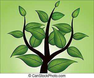 ベクトル, 木
