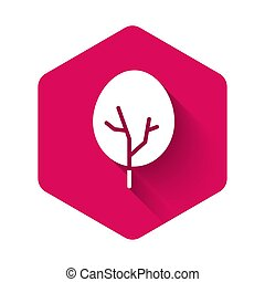 ベクトル, 森林, shadow., 木, 長い間, 白, 隔離された, button., ピンク, シンボル。, アイコン, 六角形