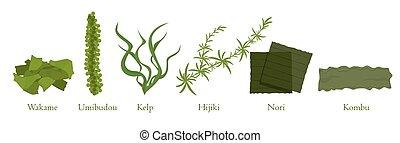 ベクトル, 植物, 海草, 漫画, コレクション, 藻, 自然, グラフィック, セット, 海洋, ...