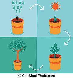 ベクトル, 概念, -, 成長, infographic