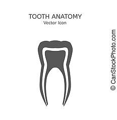 ベクトル, 歯, アイコン