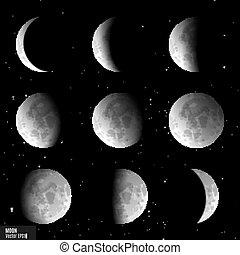 ベクトル, 段階, 月, セット