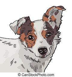 ベクトル, 犬, イラスト