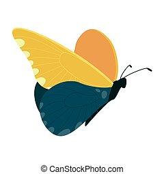 ベクトル, 白, 隔離された, 蝶, 背景, 美しい