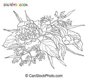 ベクトル, 着色, シャクヤク, 隔離された, book., 要素, バックグラウンド。, 花, 白, design.