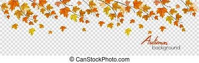 ベクトル, 秋, カラフルである, 葉, バックグラウンド。, パノラマ, 自然, 透明, 雨滴