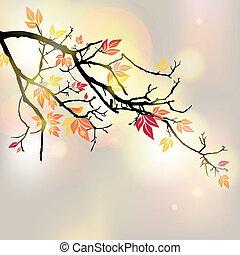 ベクトル, 秋, ブランチ