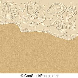 ベクトル, 背景, 海の貝