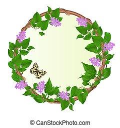ベクトル, 花, ライラック, 蝶, ラウンド, フレーム, 型