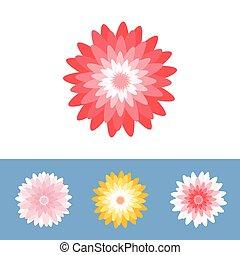 ベクトル, 花, 菊