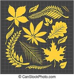 ベクトル, 葉, セット, -, コレクション