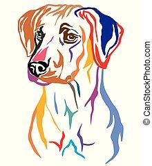 ベクトル, 装飾用である, 肖像画, rhodesian, カラフルである, ridgeback, 犬, イラスト