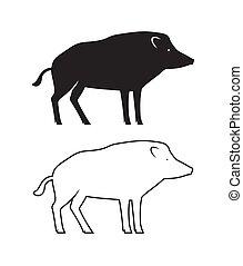 ベクトル, 雄豚, イラスト, 隔離された, 白
