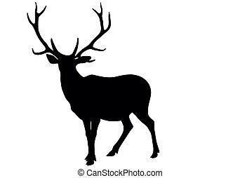 ベクトル, 鹿