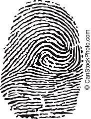 ベクトル, 黒, 隔離された, 指紋